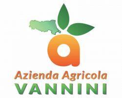 agricola-vannini-faenza-logo-siti-web-ferrara-ecommerce-bologna-seo-adwords-ferrara-digife